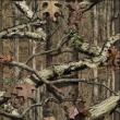 New Mossy Oak Infinity